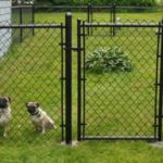 Residential Chain Link Gate