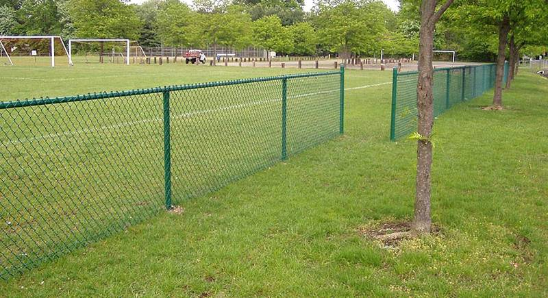 Chain Link Fence Sport