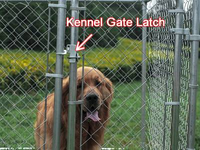 Chain Link Kennel Latch Toronto