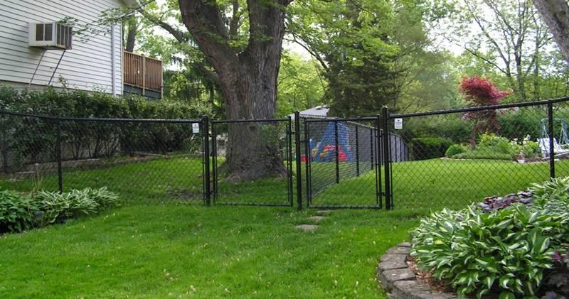 Neighboring Chain Link Fence Toronto